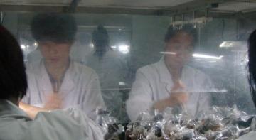 食用菌恒温恒湿生产净化车间